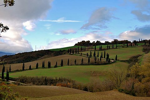 Val d'Orcia - Belvedere